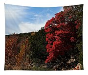 Blazing Maple Tree Tapestry