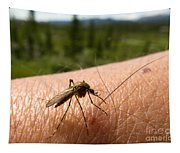Blood Thirsty Mosquito On Human Arm Tapestry