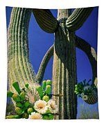 Blooming Saguaro Tapestry