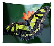 Blooms And Butterfly5c Tapestry