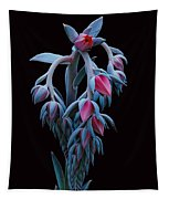 Blue And Pink Succulent Tapestry