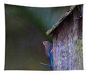 Blue And Rose Beige Plumage Tapestry