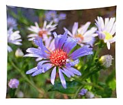 Blue Asters 3 Tapestry