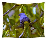 Blue Bird With A Yellow Throat Tapestry