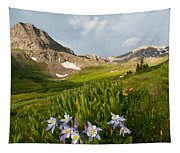 Handie's Peak And Blue Columbine On A Summer Morning Tapestry