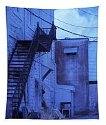 Blue Fire Escape Usa Near Infrared Tapestry