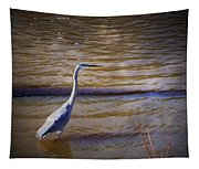 Blue Heron - Shallow Water Tapestry