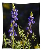 Blue Lupine  Tapestry