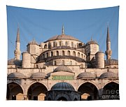 Blue Mosque Domes 01 Tapestry