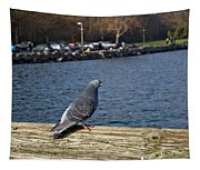 Blue Pigeon Tapestry