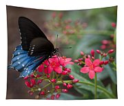 Blue Swallowtail Butterfly  Tapestry