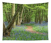 Bluebell Wood 3 Tapestry