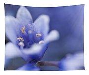 Bluebells 5 Tapestry