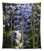 Bluebells 8 Tapestry