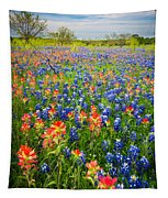 Bluebonnets And Prarie Fire Tapestry