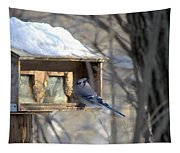 Bluejay Tapestry