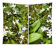 Bluets In Stereo Tapestry