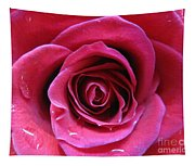 Blushing Pink Rose 3 Tapestry
