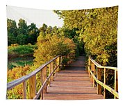 Boardwalk In A Forest, Magee Marsh Tapestry