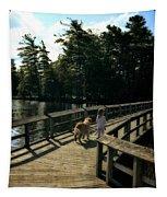 Boardwalking Tapestry