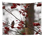 Bohemian Waxwing Tapestry