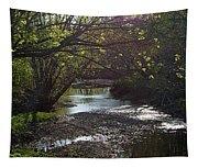 Bonne Femme Creek Tapestry