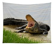 Boring And Yawning Tapestry