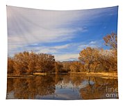 Bosque Del Apache Reflections Tapestry