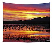 Bosque Sunset II Tapestry