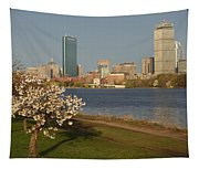 Boston Charles River On A Spring Day Tapestry