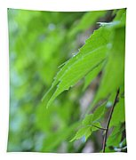 Boston Ivy Bokeh Tapestry