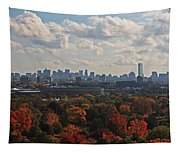 Boston Skyline View From Mt Auburn Cemetery Tapestry