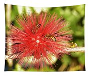 Powder Puff Flower With Bees Tapestry