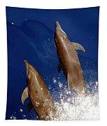 Bottlenose Dolphins Tursiops Truncatus Tapestry
