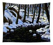 Boulder Brook In Winter Tapestry