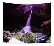Boulder Cave Falls  Tapestry