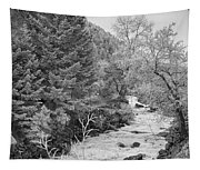 Boulder Creek Winter Wonderland Black And White Tapestry