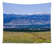 Boulder In The Summertime Tapestry