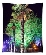 Bournemouth Winter Gardens At Night Tapestry