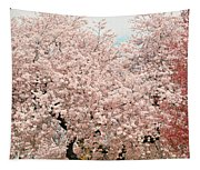 Branch Brook Cherry Blossoms Iv Tapestry