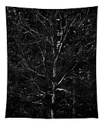 Branch Patterns Tapestry