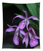 Brassanthe Maikai Orchid Tapestry