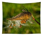 Breeze Rider 2 Tapestry