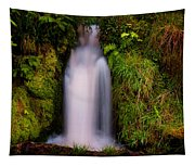 Bridal Dress. Waterfall At Benmore Botanical Garden. Nature Of Scotland Tapestry