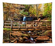 Bridge By B Reynolds Falls Tapestry