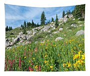 Bright Colors Of A Colorado Summer Tapestry