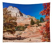 Bright Fall Colors At Zion Tapestry