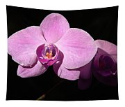 Bright Orchid Tapestry