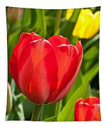 Bright Red Tulip Tapestry