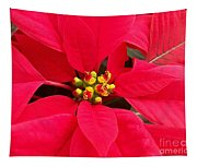 Brightest Red Poinsettia Tapestry